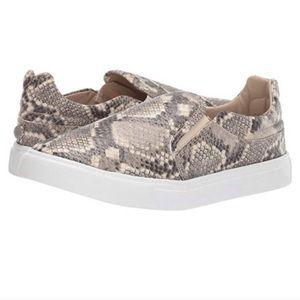 NEW Steve Madden Snakeskin Sneakers